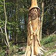 The Macclesfield Wizard