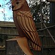 Stylised  Barn Owl
