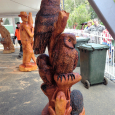 Three Owls in a tree - 3rd place at Stihl, Melbourne, competition