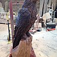 Eagle in Oak