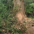 A Fairy Door in a Brittany woodland