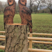 A Tawny Owl and an Eagle Owl added to a tree stump