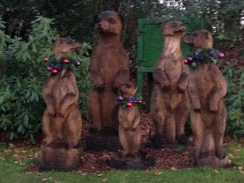 Five large Christmas Meercats