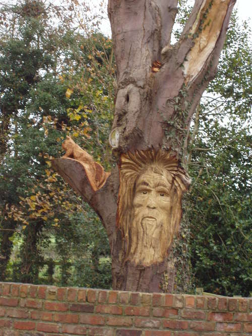 A chainsaw sculptures over metres high greenman