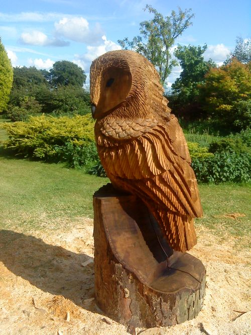 A chainsaw sculptures over metres high large tawny owl