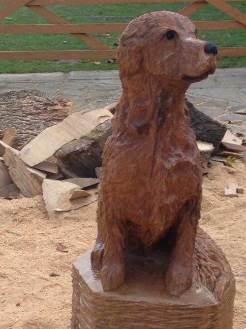 A Dog Memorial
