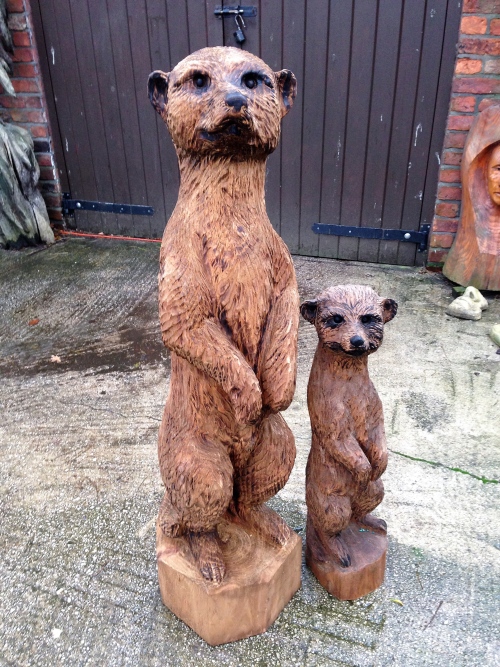 A Meerkat and baby