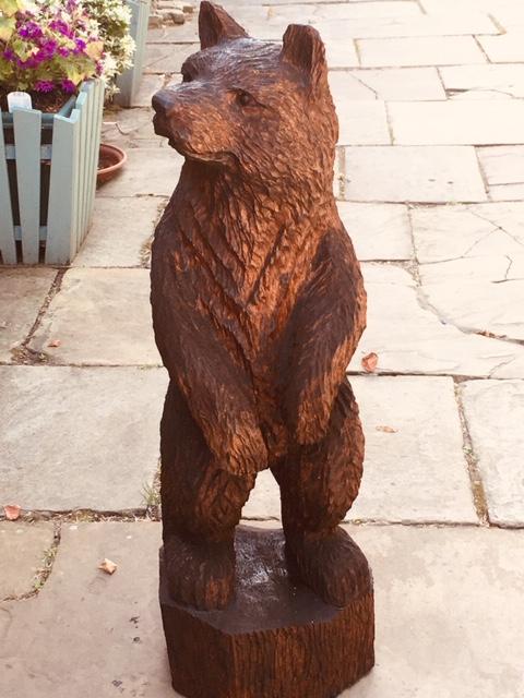 A small Brown Bear