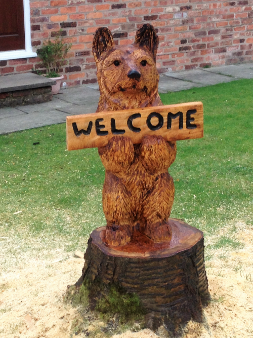 A small welcome bear