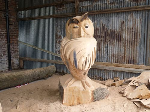 Large Owl - from Winnie the Pooh
