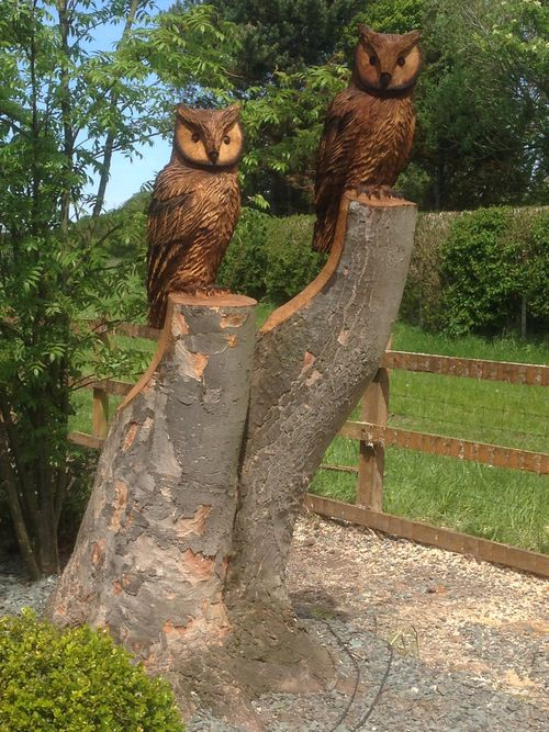 Two Eagle Owls