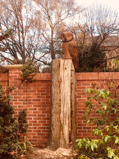 A Tawny style Owl added to a poor tree stump.