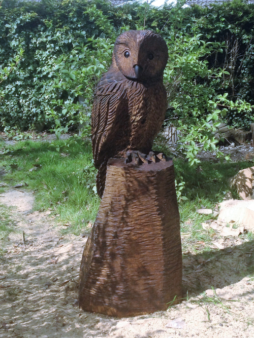 A large Tawny style Owl