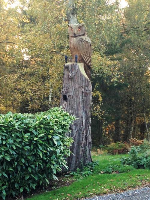 A very large Eagle Owl