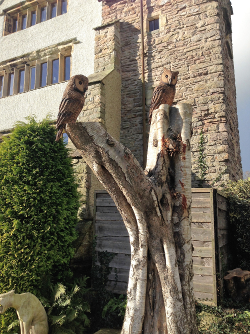 Two small Tawny style Owls added to a tree