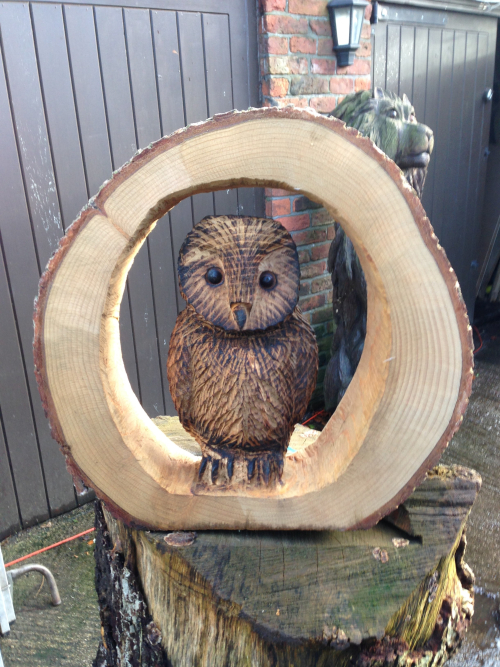 A small Owl in a tree ring
