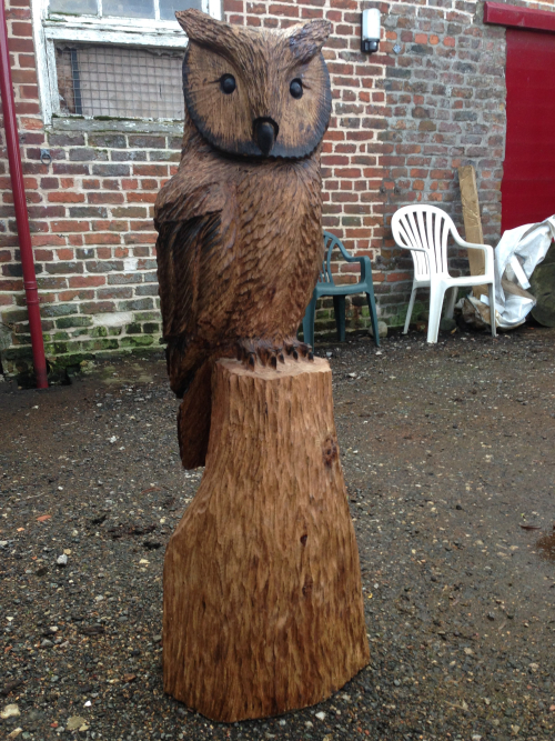 A Wise Owl Sculpted with chainsaws by www.thetimburgess.com