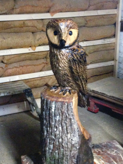 Small Tawny Owl