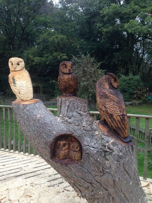 A Tawny, Barn and Eagle Owl