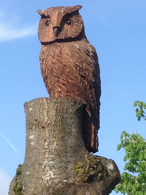 Eagle Owl on a stump