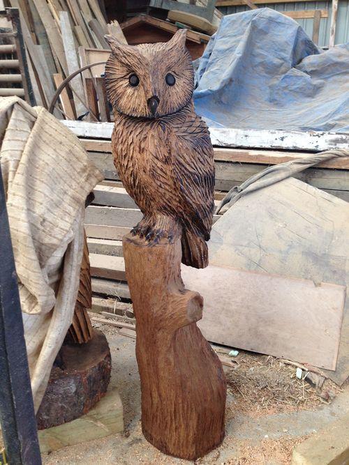 Small eagle Owl in oak