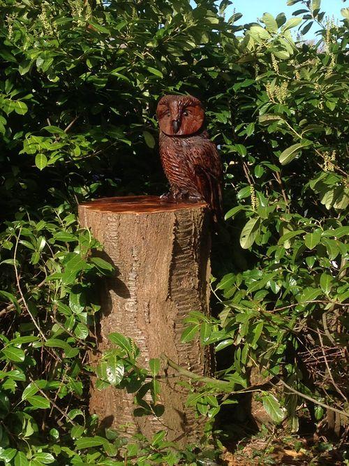 A little stylised Tawny Owl