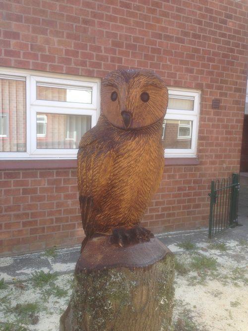 A stylised Tawny Owl