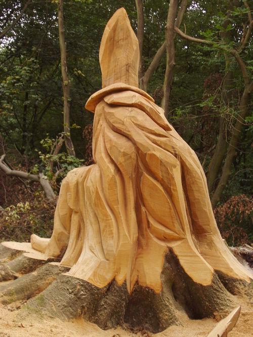 The Wizard's Cloak