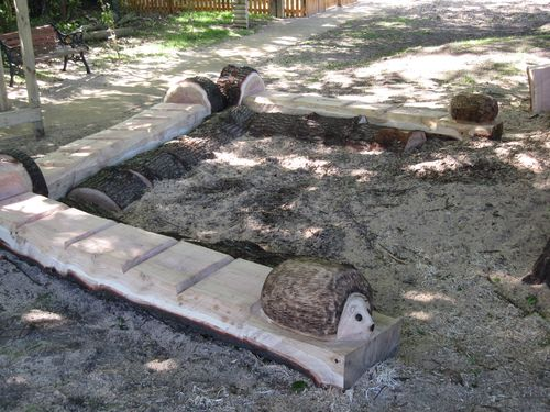 C chainsaw sculptures for schools public places hedgehog