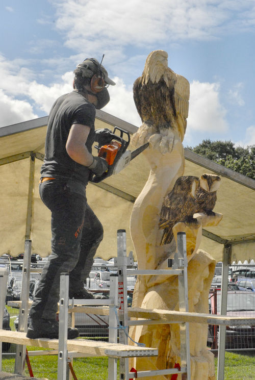 COMPETITION  PIECE - English Open Chainsaw Carving Competition, 2008