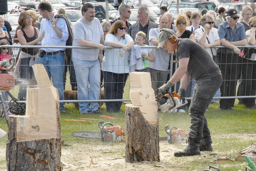 SPEED-CARVING at the English Open Chainsaw Carving Competition, 2008