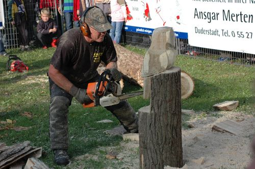 Speed-carving in Germany