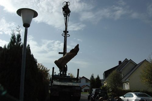 Craning in the 'Old Man and his Fish Eagle'