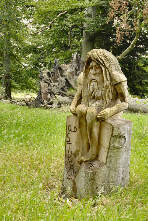 Old Stumpy