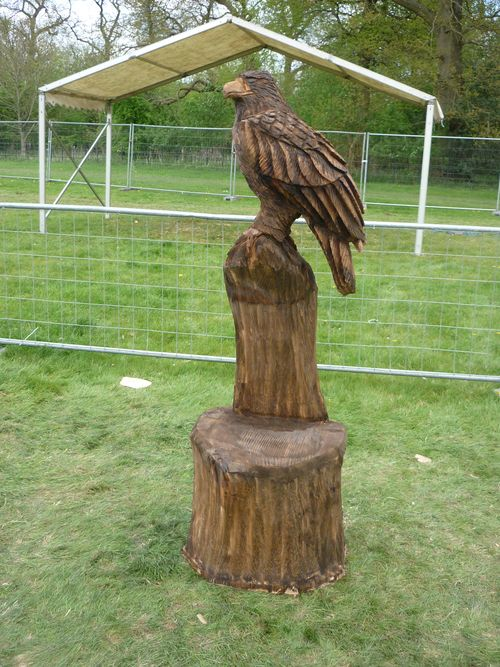 Large  Eagle - sitting on a chair